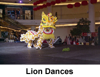 lion dance gallery